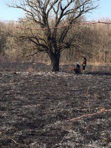 DVD Stupnik - Požar niskog raslinja 2017.
